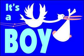 It's a Boy! Flag