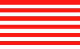 Sons of Liberty Historical US Flag