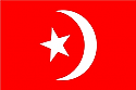 Nation of Islam Flag